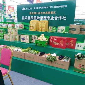 建起蔬菜基地 助力产业发展